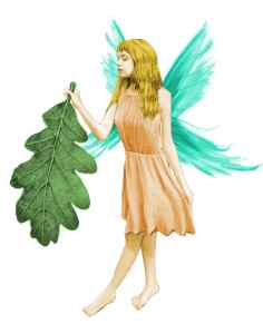 fairy-with-leaf-color_sm